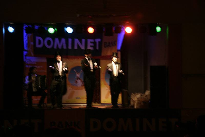 Dominet Bank 2007